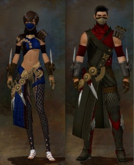 Guild Wars 2 Armor Female v Male