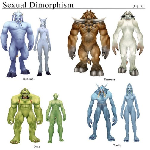 Some of the playable races from WoW